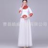 新款大合唱演出服古典青花瓷长裙现代舞台装古筝舞蹈表演服成人女