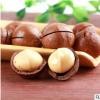 罐装坚果 休闲零食奶油味夏威夷果含罐250g送开口器坚果一件代发