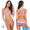 泳衣女 性感比基尼两件套 亚马逊热卖带胸垫 泳装批发招代理