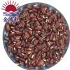 林和赤小豆 2019年新货赤小豆 米赤豆 赤红豆 红竹豆