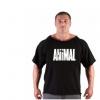 欧美健身健美男t恤 蝙蝠衫 运动跑步宽松圆领短袖gym服装 可订制