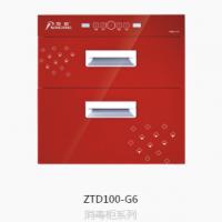 ZTD100-G2