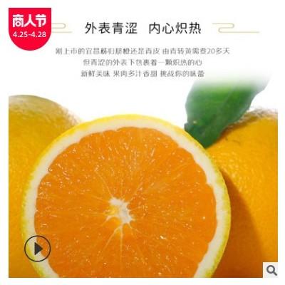 宜昌秭归九月红脐橙手剥果冻橙地理标志接发货新鲜水果当季水果