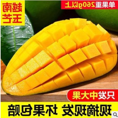 10斤整箱越南大青芒果玉芒当季新鲜芒果热带水果甜心芒批发
