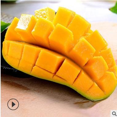 【海南金煌芒果】新鲜热带水果 当季大青芒 甜心水仙芒5斤8斤代发