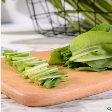 云南特产新鲜蔬菜板蓝根大青叶特色凉拌生食菜酒店食材基地现挖