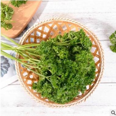 新鲜蔬菜意大利香芹细叶欧芹意番茜浓香味道西餐配料食材现摘现发