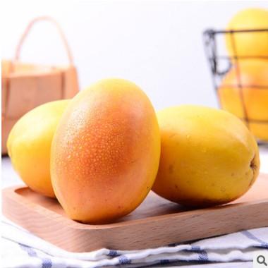 新鲜水果木瓜红花酸木瓜云南特产调味品腌制泡酒炖鸡青木瓜现摘
