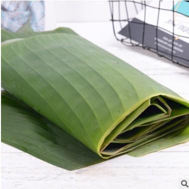 云南特产芭蕉叶新鲜现摘香蕉叶粽子糍粑菜肴糕点摆盘现割蕉叶子