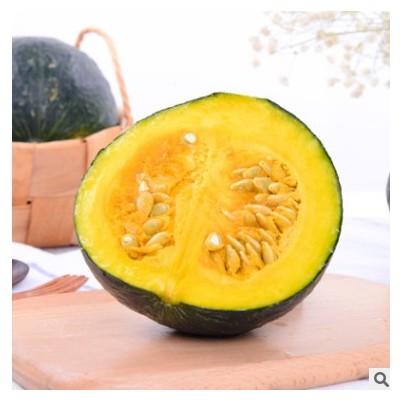 云南农家特产板栗味粉糯甜食贝贝南瓜宝宝辅食绿皮瓜新鲜蔬菜批发