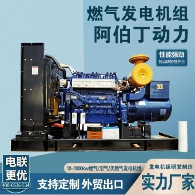 潍坊燃气发电机组 200kw沼气燃气发电机品质放心全国联保